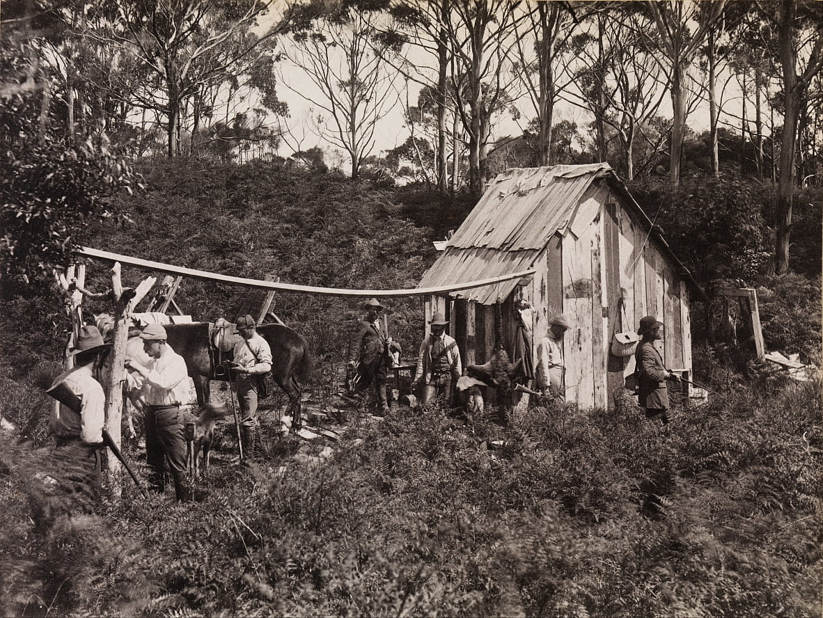 Berties Hut, Expedición del Club de naturalistas de campo a King Island de Archibald James Campbell