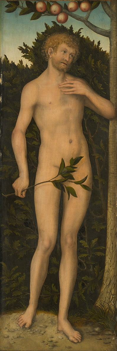 Adán de Lucas Cranach the Elder