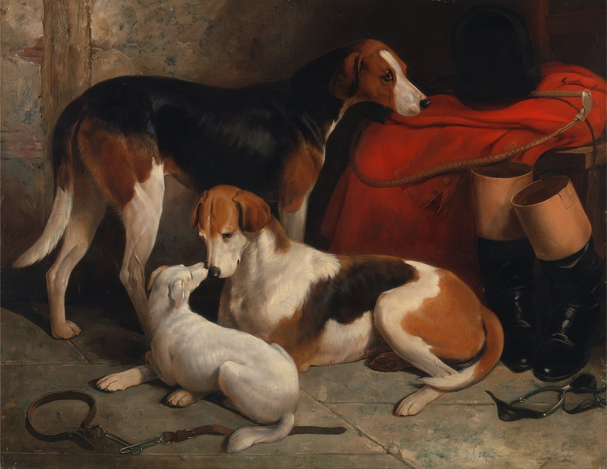 Un par de Foxhounds con un Terrier, propiedad de Lord Henry Bentinck de William Barraud